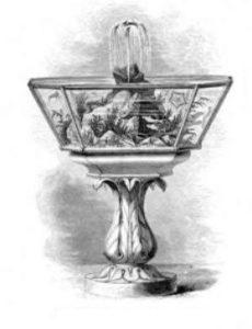 sejarah aquascape