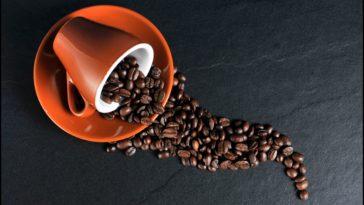 jenis-jenis kopi serta manfaat dan dampaknya