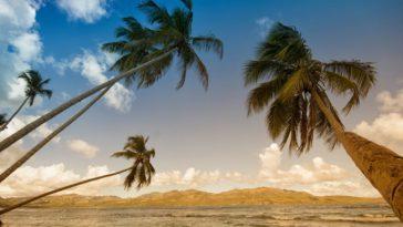 17 Manfaat air kelapa muda